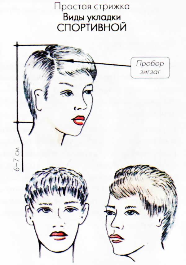Виды причесок женских и стрижек